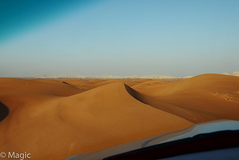 Magic-Desert-Safari_09