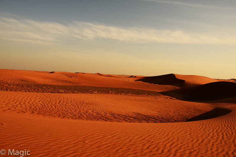 Magic-Desert-Safari_12