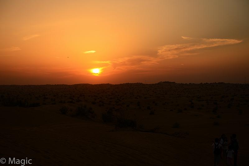 Magic-Desert-Safari_14