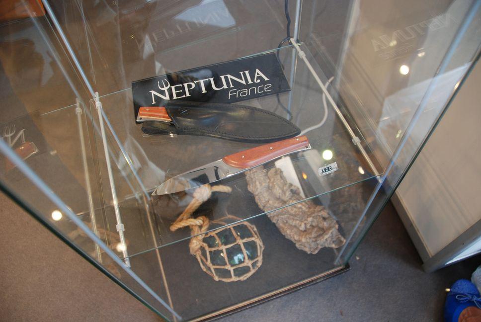 Neptunia019