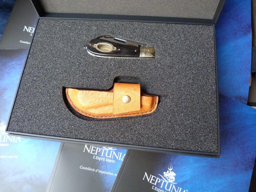 Neptunia-Üblo 11