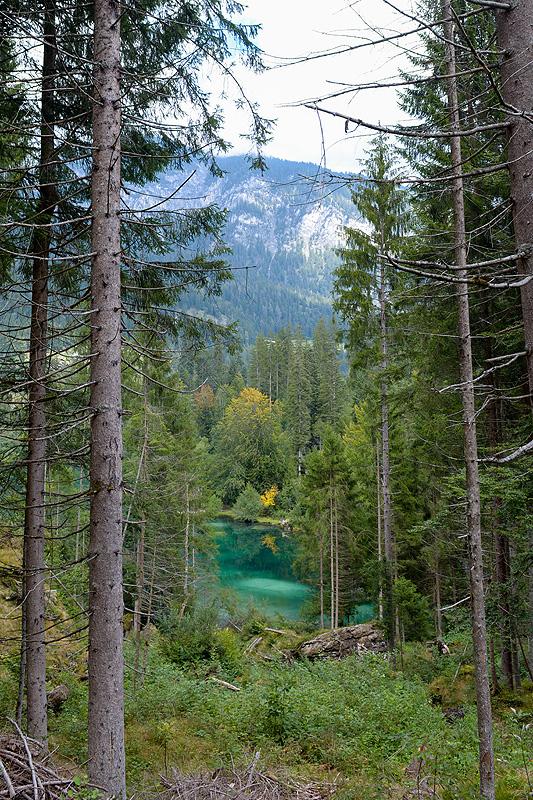 Flims-Kulinarik-Trail_8629