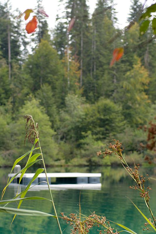 Flims-Kulinarik-Trail_8638