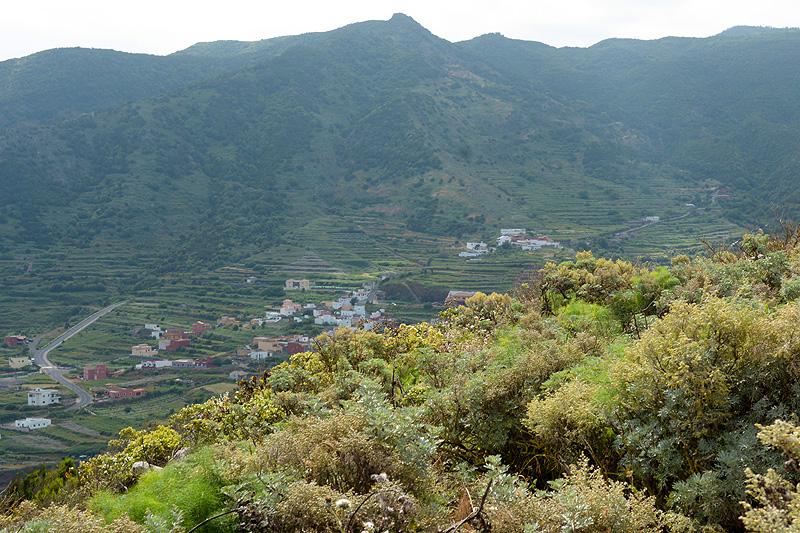 Tenerife_1124