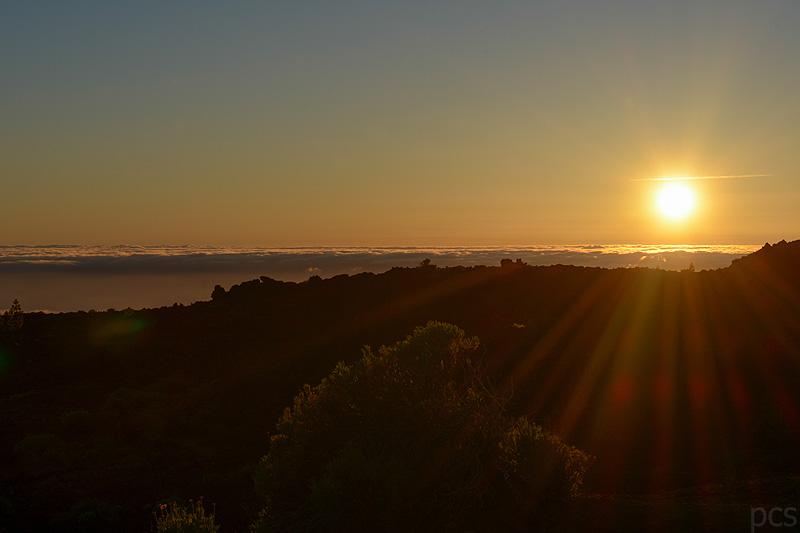 Tenerife_1614