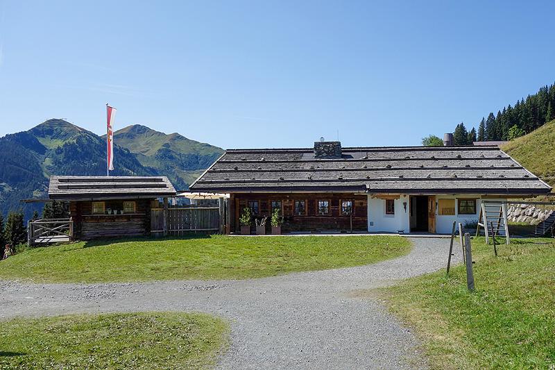 Wieseralm Reiterkogel Saalbach Hinterglemm Österreich