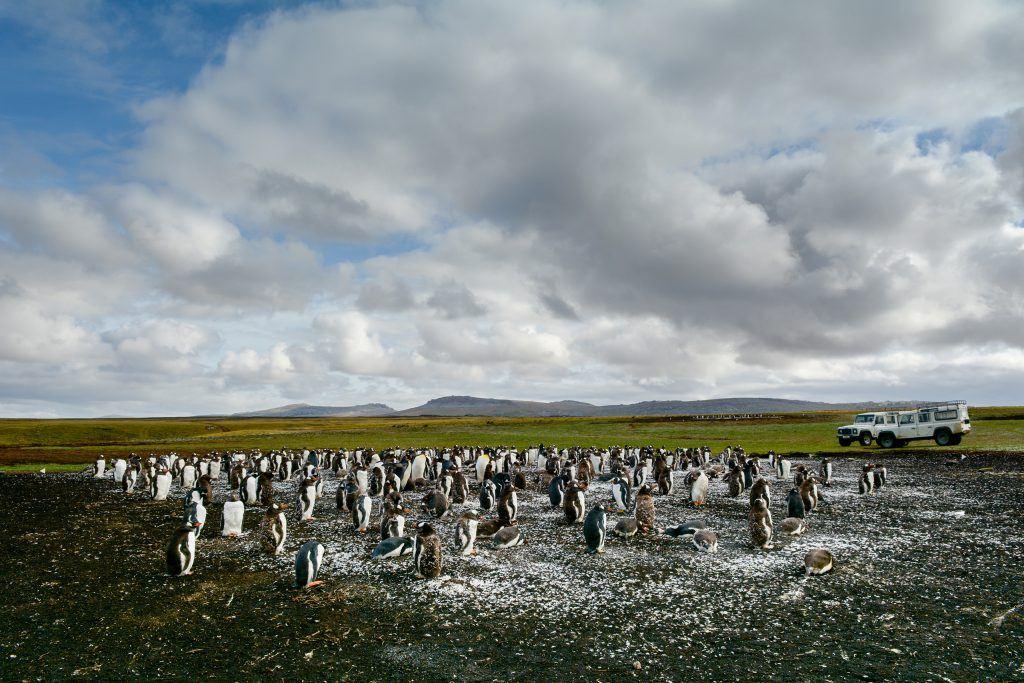 Luxify Antarktis Seabourn Quest Ultimate Antarctica Patagonia